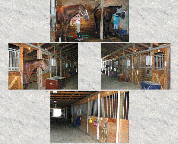 Picture of boarding facility at Willowbrooke Farm in Plymouth, MI