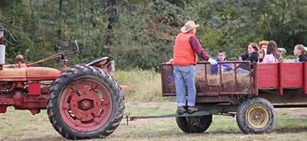 hayrides, pumpkin patch, haunted hayrides, best place for halloween, best place for pumpkins