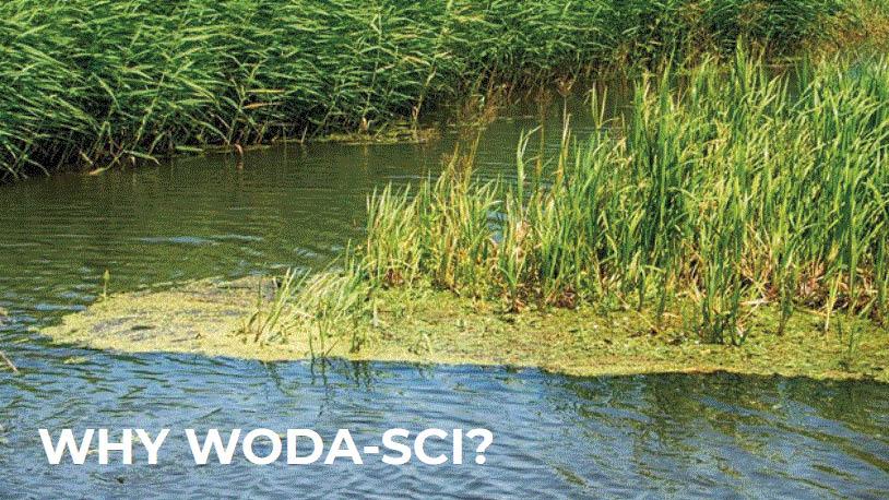 Woda-Sci Works through MEC Systems, Bloomfield, MI