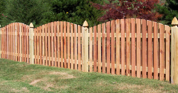 Wooden fence, backyard, home improvement