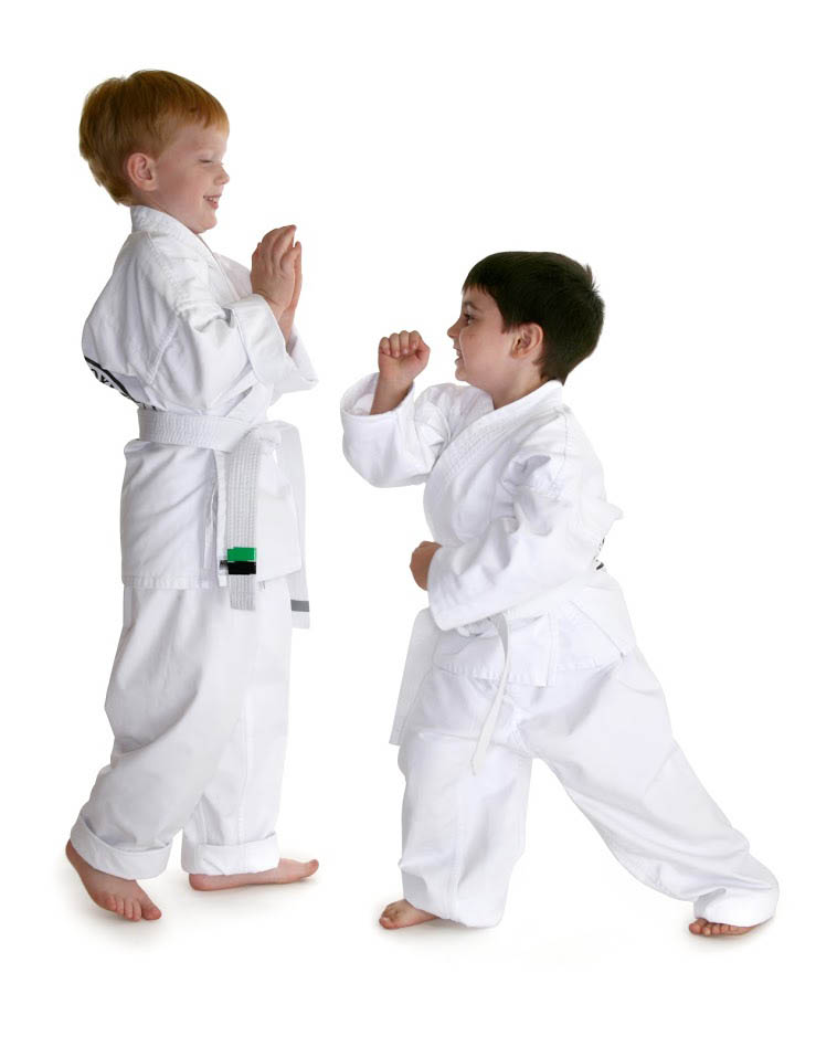 yongsa martial arts, elite, weapons, training, defense, summer camp,