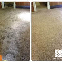 Zerorez Carpet Cleaning Local Coupons November 2019