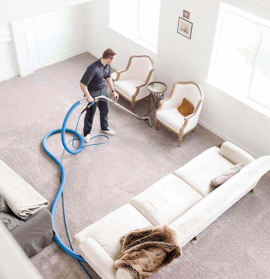 professional carpet cleaning by Zerorez