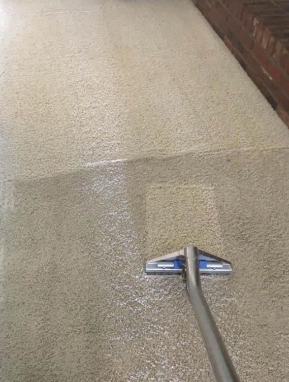 carpet cleaning service Weber County Utah