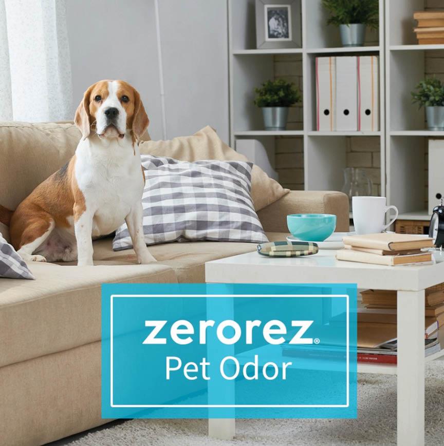 Zerorez Of Pittsburgh Zerorez Carpet Cleaning Coupons