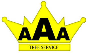 AAA Tree Service coupons