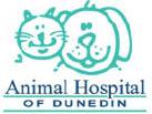 Pet coupons Vet Care coupon in Dunedin FL, Animal care