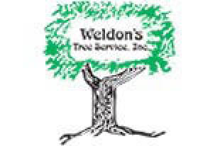 Weldon's Tree Service is located in Maple Shade and serves Burlington and Camden Counties