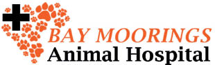 Free Initial Pet Exam Coupon - Bay Moorings Animal Hospital