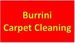 Burrini Carpet Cleaning logo in Morris County, NJ