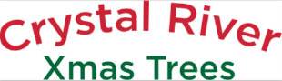 Christmas Trees Delivered To Your Front Door