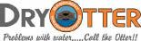 Dry Otter Basement Waterproofing & Concrete Raising logo