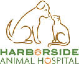 Harborside Animal Hospital Clearwater, FL