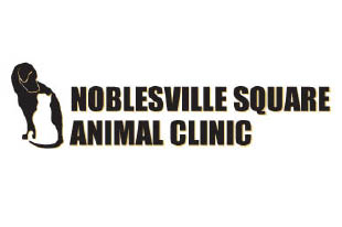 Noblesville Square Animal Clinic, Vet Services, Training, Emergency Care discount coupon