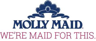 molly maid home cleaning maid service dayton fairborn beavercreek xenia miamisburg oakwood ohio