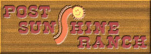 Child care After School care VPK Post Sunshine Ranch Brandon, FL
