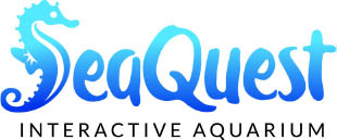 35% Off Daily Admission or Annual Passports at SeaQuest!