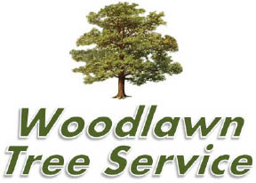 Woodlawn Tree Service coupons