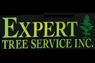 Tree removal and tree service,Expert Tree Rochester New York