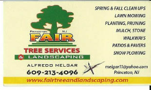 Fair Tree Services & Landscaping coupons