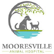 $25 Off First Exam at Mooresville Animal Hospital