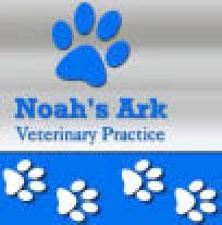 veterinarian, vet, vets in brooklyn, veterinary, animal hospital, pet store, pet stores