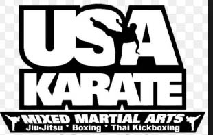 USA Karate in Pawling & Patterson NY logo