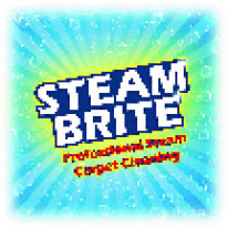 Steam Brite Professional Steam Carpet Cleaning