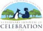 VETERINARY HOSPITAL OF CELEBRATION