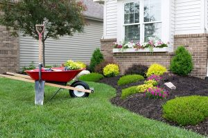 Lawn Care Advertising With Direct Mail